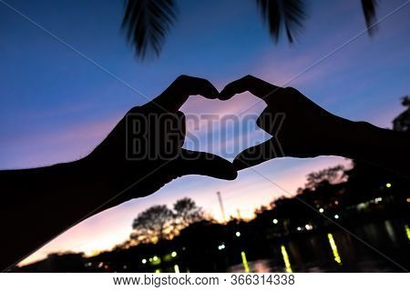 Silhouette Hand Made Heart Symbol In The Shadows.the Reflection In The Marsh.there Are Coconut Leave