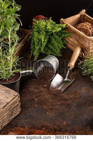 Spring Hobby Garden Works Concept On Dark Background