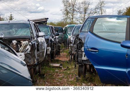 Car Wrecks At The Car Cemetery. Car Scrap Concept.