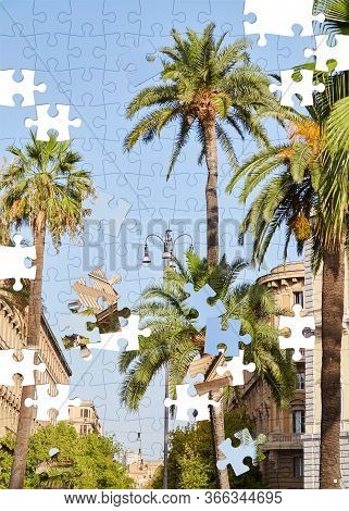Assorted Jigsaw Puzzle Of Palm Trees Against The Blue Sky In The Streets Of Rome, Italy