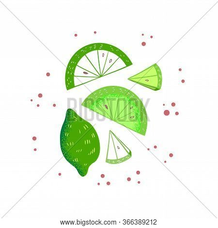 Lime And Lime Slices Vector Illustration. Citrus Fruit Poster In Colorful Cartoon Style. Juicy Tasty