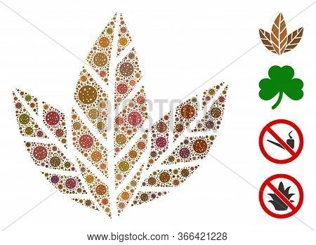 Mosaic Tobacco Leaves Organized From Coronavirus Elements In Different Sizes And Color Hues. Vector