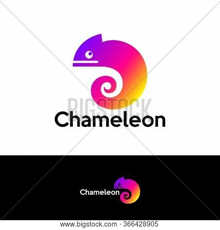 Chameleon Logo. Colored Bright Chameleon. Isolated Chameleon On  A Different Backgrounds. Vector Ill