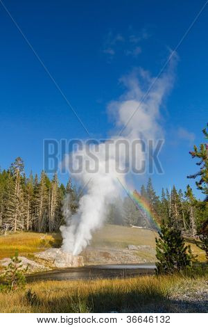 Riverside Geyser Erupting At Yellowstone National Park