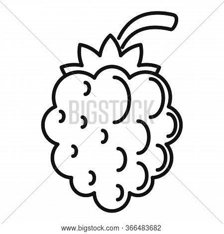 Natural Blackberry Icon. Outline Natural Blackberry Vector Icon For Web Design Isolated On White Bac