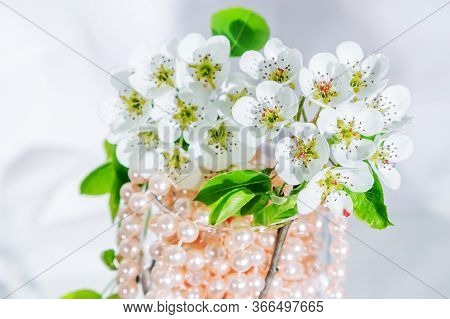 Beautiful Blooming Pear Tree Branch With White Flowers In A Glass With Pink Pearl Beads.