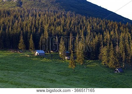 Wooden Houses At The Edge Of A Coniferous Forest In A Meadow High In The Mountains At Sunrise. Mount