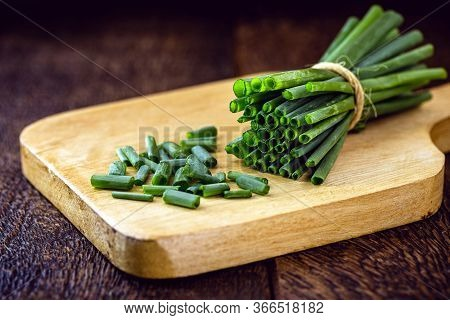 Allium Schoenoprasum, Popularly Known As Chives, Chives Or Chives, In Portugal, Is A Plant Originall