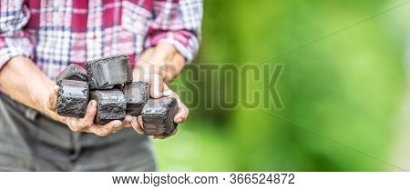 Banner View Of Coal Briquettes In Hands Of An Old Man With A Green Background.