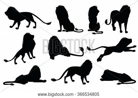 Set Of Black Silhouette Male Proud Powerful Cute Lion Character Cartoon Style Animal Design Flat Vec