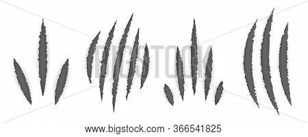 Animal Claw Marks (cat, Tiger, Lion, Bear). Set Of Monster Claws, Hand Scratches Or Rip Through Whit