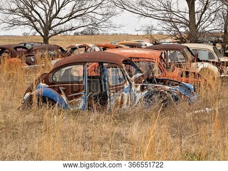 Okemah, Ok - 2 Mar 2020: Rows Of Wrecked Volkswagon Beetle Cars In Rusty And Deteriorating Condition