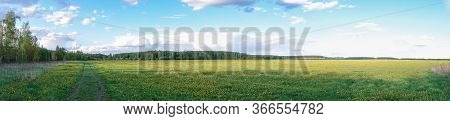 Beautiful Countryside Landscape. Green Field And Blue Sky With Beautiful Clouds. Panoramic Shot