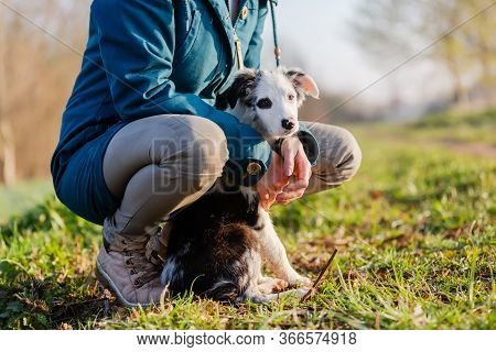 Woman Sitting With A Cute Puppy Outdoors