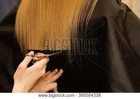 Young Customer With Long Demaged Hair In Hairdressing Salon. Hair Care Problems. Hairstylist Doing H