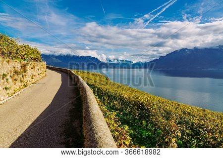 Lavaux Vineyard Terraces Hiking Trail With Lake Geneva Landscape, Canton Vaud, Switzerland