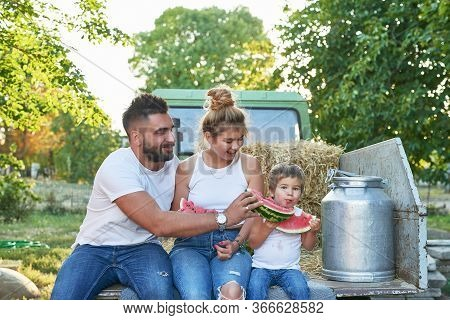 Family On Farm.harvesting Watermelons. Pickup With Watermelons. Picnic On Farm.family Day.mother And