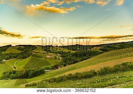 Vineyards Panorama In Steinbach, Leibnitz Area Famous Destination Wine Street Area South Styria , Wi