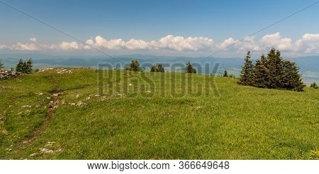 Tlsta Hill Summit In Springtime Velka Fatra Mountains In Slovakia With Flowering Mountain Meadow, Sm