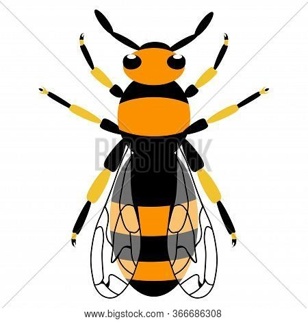 Wasp Icon. Bee Icon. Insect Color Wasp. A Stinging Insect. Flat Design. Vector