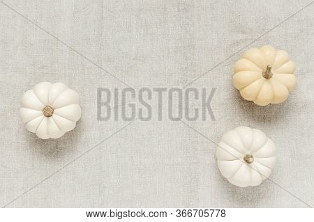 White Baby Boo Pumpkins On Canvas Background, With Copy Space.