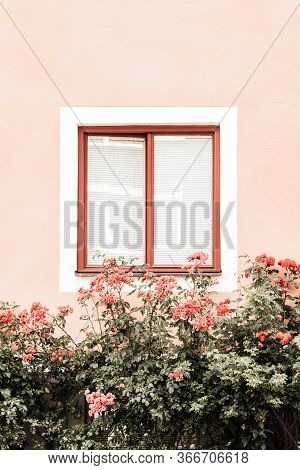 Flowers Decorating The Window Of A Pink Building In A European Town.