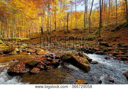 Mountain River In Autumn Forest. Autumn Landscape. Rocks In The River That Flows Through Forest At T