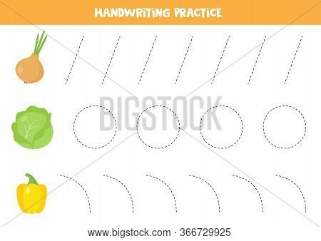 Trace The Lines. Handwriting Practice For Kids. Cartoon Vector Onion, Cabbage And Yellow Bulgarian P