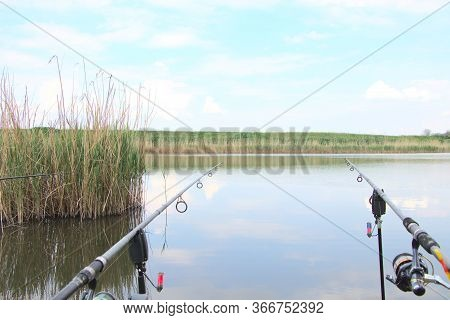 Fishing Rods On The River Bank, Fishing. Hobbies For Fishermen. Fishing Rods For Fishing, Standing A