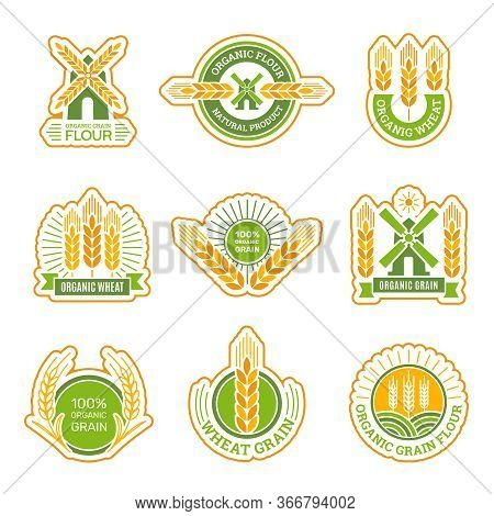 Wheat Badges. Field Grain Farm Fresh Flour Products Circle Labels Vector Collection. Agriculture Far