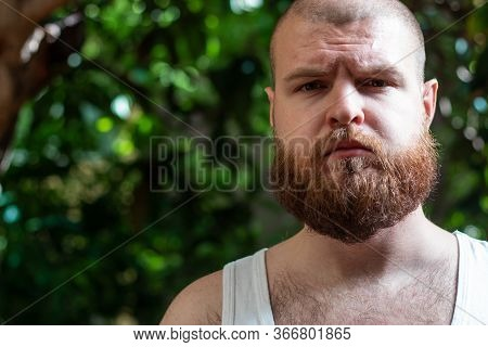 Bearded Bald Man In An Undershirt With Hairy Chest Standing Outside Looking Straight At The Camera.