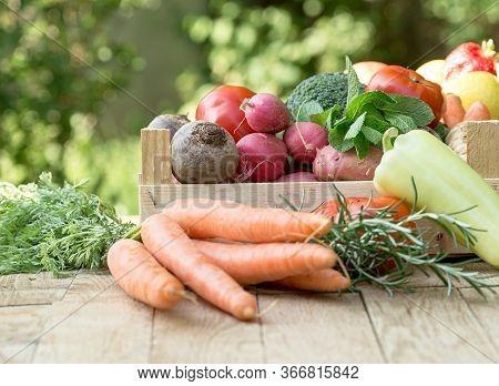 Healthy Vegetarian Food, Organic Vegetable On Wooden Table