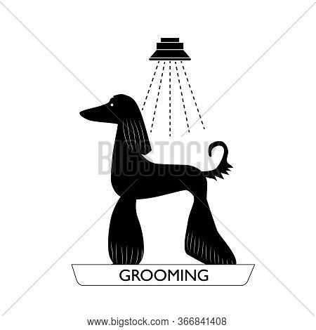 Silhouette Of A Beautiful Dog. Shower Water Is Pouring Onto The Dog. Pet Care, Grooming. Vector Illu