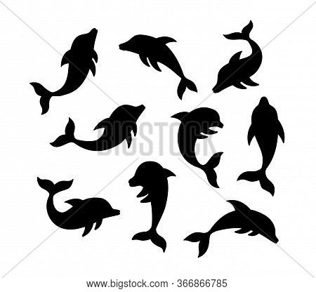 Set Of Dolhin Silhouette. Hand Drawn Vector Illustration. Black Color Dolphin Icon Isolated On White
