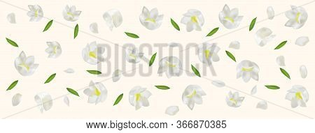3d Realistic Lilly Of The Valley With Green Leaf. White Lily Of The Valley In Motion. Fragrant Flowe