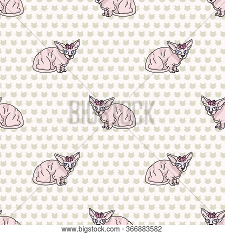 Cute Cartoon Sphynx Kitten With Pink Bow Seamless Vector Pattern. Pedigree Exotic Kitty Breed Domest