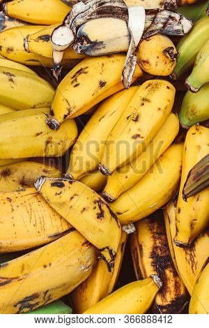 Clusters Of Ripe Yellow Bananas Photographed On A Fruit Market. Overripe Banana. Tropical Fruits. He