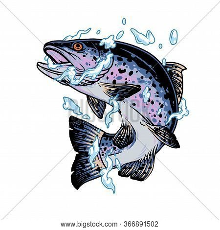 Jumping Trout Fish In Water Splashes In Vintage Style Isolated Vector Illustration