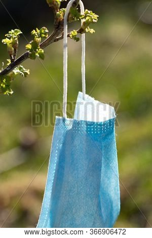 A Medical Mask Is Hanging. A Disposable Medical Mask Hanging On A Twig And Dried In The Sunlight For