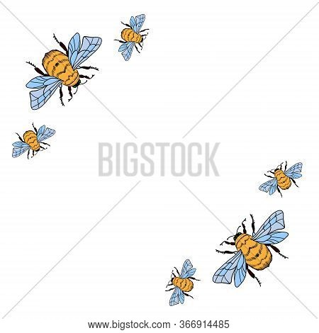 Vector Frame With Honey Bee On A White Background. Bumblebee, Beehive.