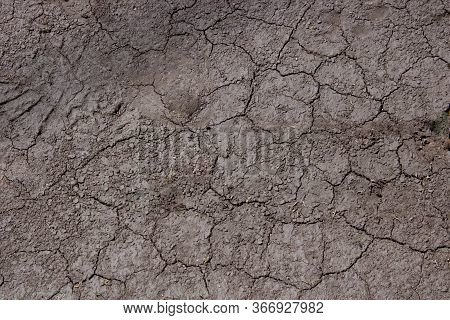 Dried Cracked Earthen Soil Background Texture Of The Soil. A Mosaic Pattern Of Earths Dried Soil