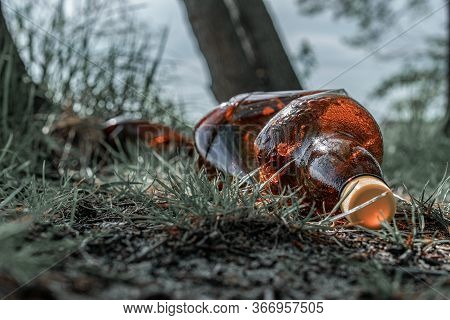 Pollution Garbage In Environment Forest. Rubbish Plastic Waste On Woodland. Empty Used Dirty Bottles