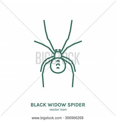 Black Widow Spider Sign. Air-breathing Arthropod Pictogram. Outline Icon. Graphic Design For Print,