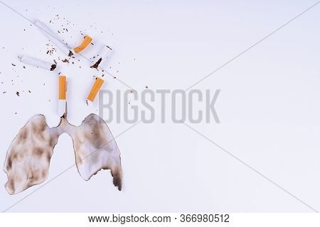 Cigarette Smoke's Lungs. The Cigarette Destroy Lungs On White Background. Cigarette Causes Cancer An