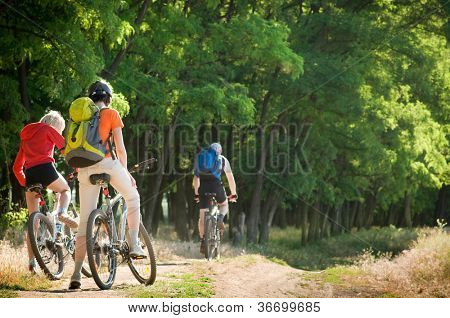 mixed group of cyclists biking summer day
