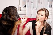 Blonde cute woman give dog high Five and evaporated electric cigarette poster