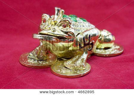 Golden Feng Shui Frog
