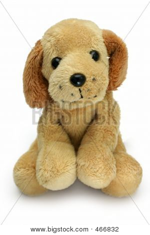 poster of soft plush toy dog looking cute straight into the camera