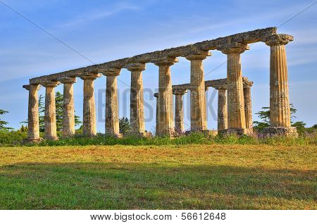 Tavole Palatine. Metaponto. Basilicata. Italy.