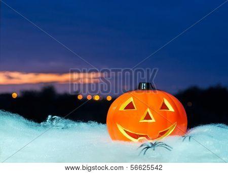 Pumpkin At Dusk
